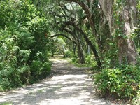2.2 Acre Lakefront On Chain Of Lake : Inverness : Citrus County : Florida