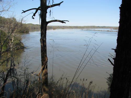 Riverfront Property With Beautiful : Camden : Wilcox County : Alabama