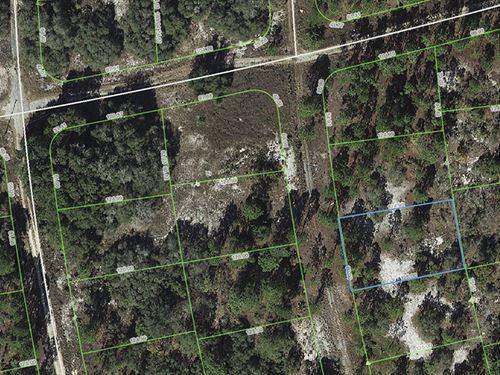 Rural Lot, Lake Placid, Fl : Lake Placid : Highlands County : Florida