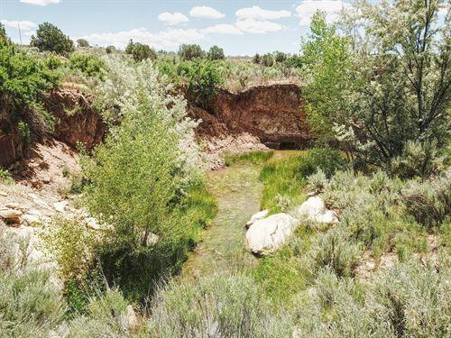Mountain Views : Cortez : Montezuma County : Colorado