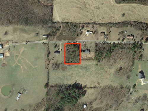 1 Acre Tree Covered Residential : Henagar : DeKalb County : Alabama