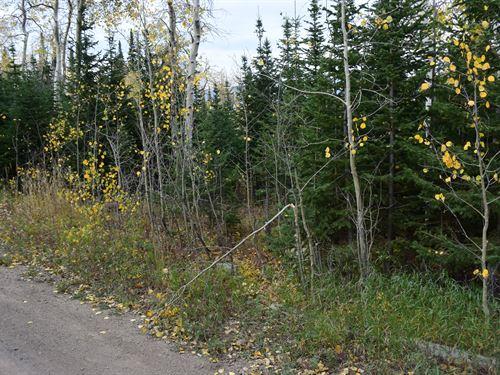 Pines At Elk Ridge Estates, Lot 10 : Dubois : Fremont County : Wyoming