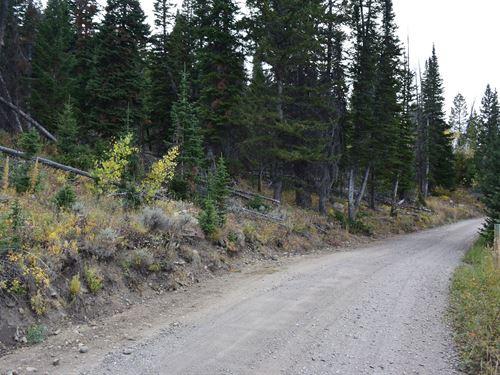 Pines At Elk Ridge Estates Lot 12 : Dubois : Fremont County : Wyoming