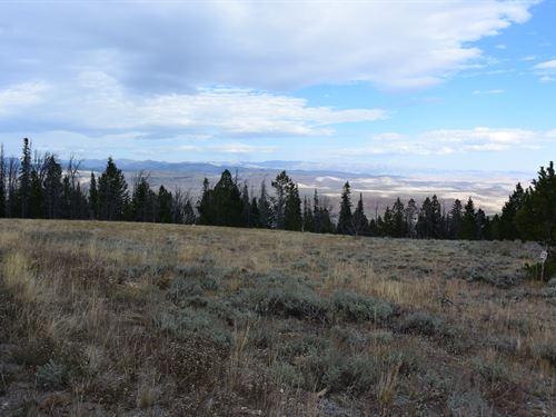 Pines At Elk Ridge Estates Lot 14 : Dubois : Fremont County : Wyoming