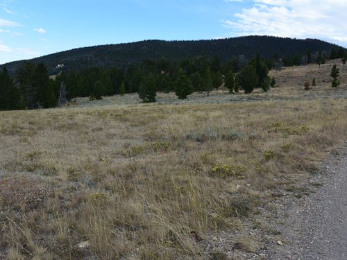Pines At Elk Ridge Estates Lot 15 : Dubois : Fremont County : Wyoming