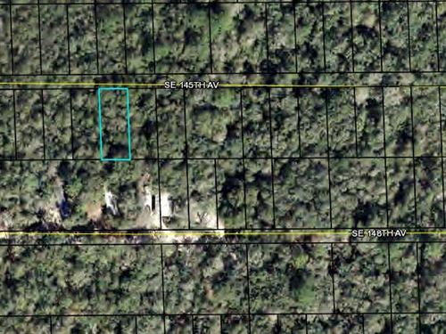 Land For Home, Dixie County, Fl : Dixie County : Dixie County : Florida
