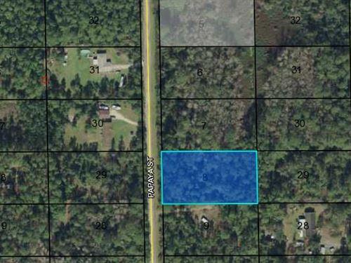 Investment Lot, Flagler County, Fl : Flagler County : Flagler County : Florida