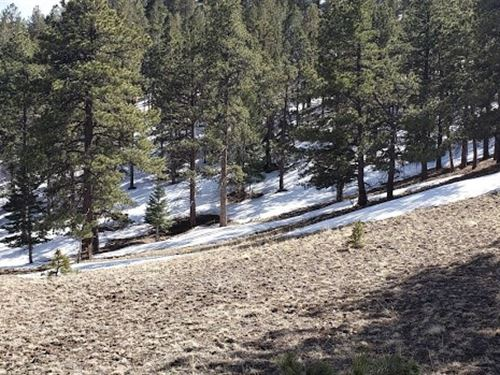 8.9Acres Westcliffe Custer County : Westcliffe : Custer County : Colorado