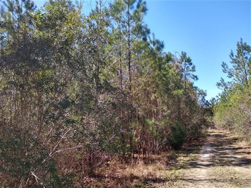 13.32 Acres, Georgetown County, Sc : Georgetown : South Carolina