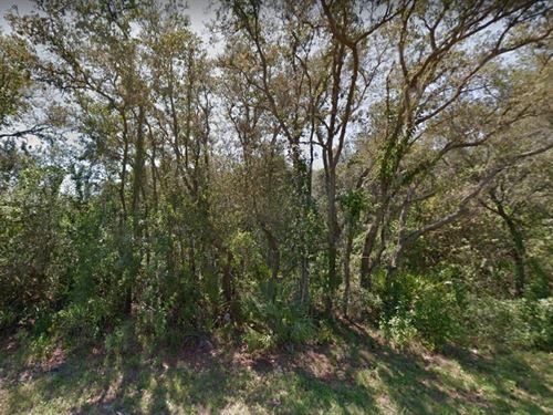 Highlands County, Fl $42,000-Neg : Sebring : Highlands County : Florida