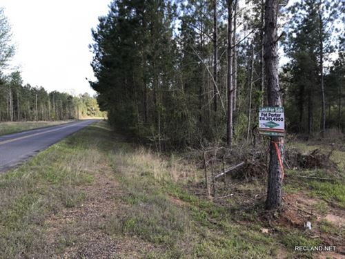 7.5 Ac, Wooded Home Site Tract : Dodson : Winn Parish : Louisiana