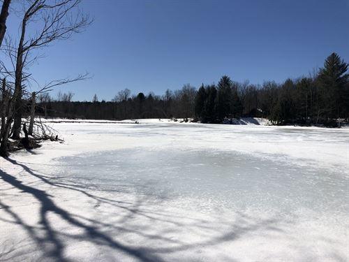 Carleton Pond Camp Site : Camden : Oneida County : New York