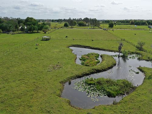 Sand Ridge Estates 5 Acres : Frostproof : Polk County : Florida
