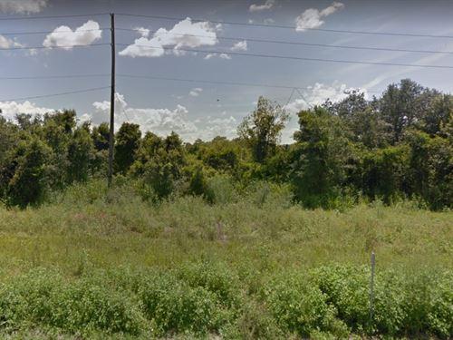 Polk County, Fl $25,000 : Frostproof : Polk County : Florida