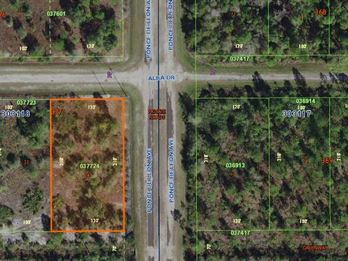 Investment Lot, Indian Lake Estate : Indian Lake Estates : Polk County : Florida