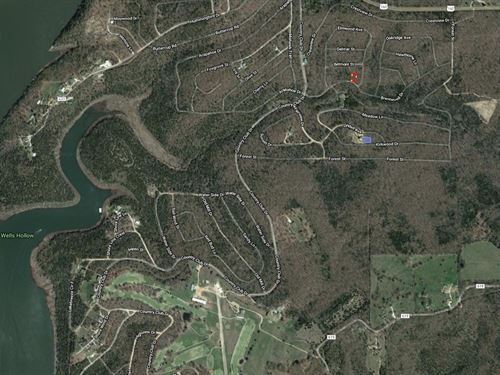Bull Shoals Lake Building Lot : Isabella : Ozark County : Missouri