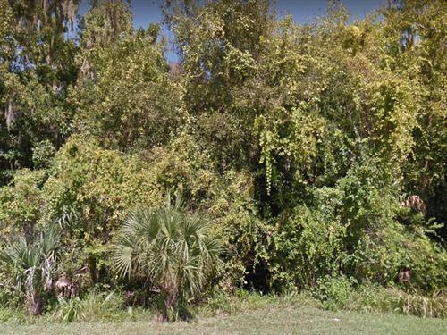 Citrus County, Fl $8,500 : Crystal River : Citrus County : Florida