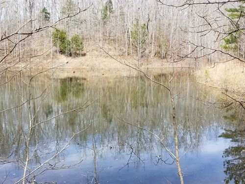 Perry County TN One Acre Tract : Lobelville : Perry County : Tennessee