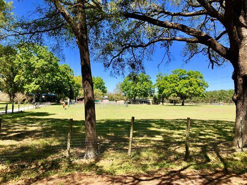 Working Farm in Alachua, FL : Alachua : Florida