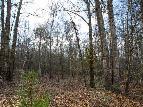 Westside Farm Tract 3 : Statesboro : Bulloch County : Georgia