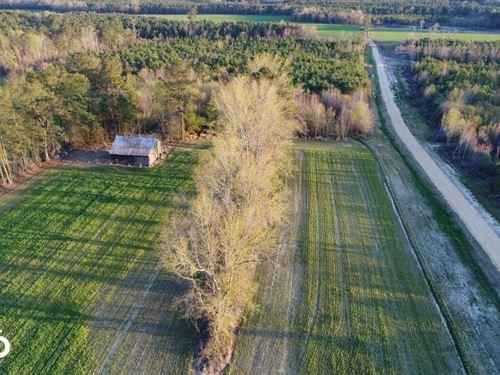 Hatcher Road Mini-Farm : Selma : Johnston County : North Carolina