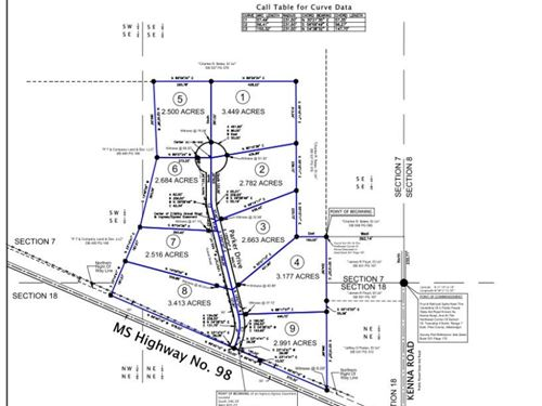 2.98 Acre Lot North Pike School : Summit : Pike County : Mississippi
