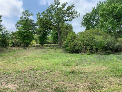 King Oaks Lot : Iola : Grimes County : Texas
