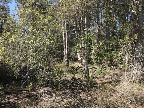 2.5 Acre Country Retreat, Zoned Ag : Punta Gorda : Charlotte County : Florida