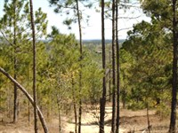 Private Chesterfield County Sc Land : Ruby : Chesterfield County : South Carolina