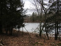 Littles Lake, Lake Frontage Lot : Irons : Lake County : Michigan