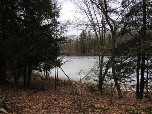 Littles Lake, Lake Frontage Lot : Irons : Lake County : Michigan