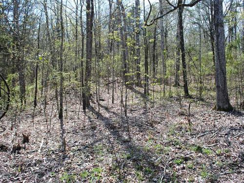 Lot 14 0.53 Acres of Rainbow Acr : Heber Springs : Cleburne County : Arkansas