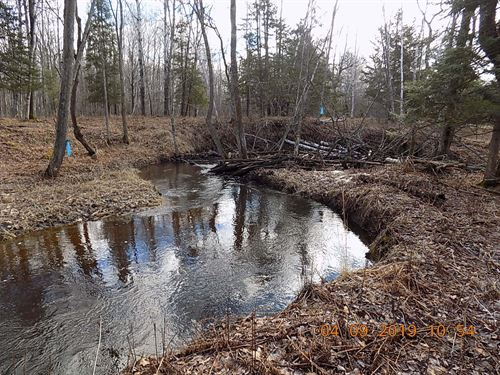 Waterfront Land Pine County, MN : Finlayson : Pine County : Minnesota