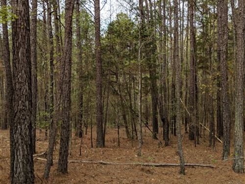 2 Acres, Fairfield County, Sc : Blair : Fairfield County : South Carolina