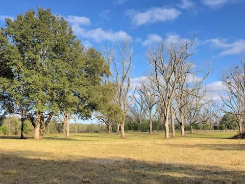 Beautiful N FL Country Subdivision : Trenton : Gilchrist County : Florida