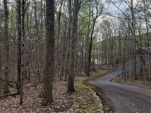 Corner Lot With Cherokee Lake Views : Mooresburg : Hawkins County : Tennessee