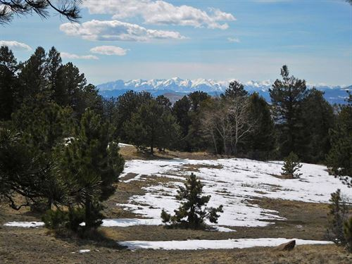 6 Acre Private Retreat : Cripple Creek : Teller County : Colorado
