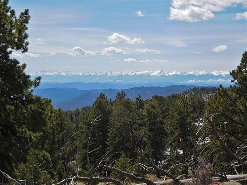 10 Acres With Spring : Cripple Creek : Teller County : Colorado