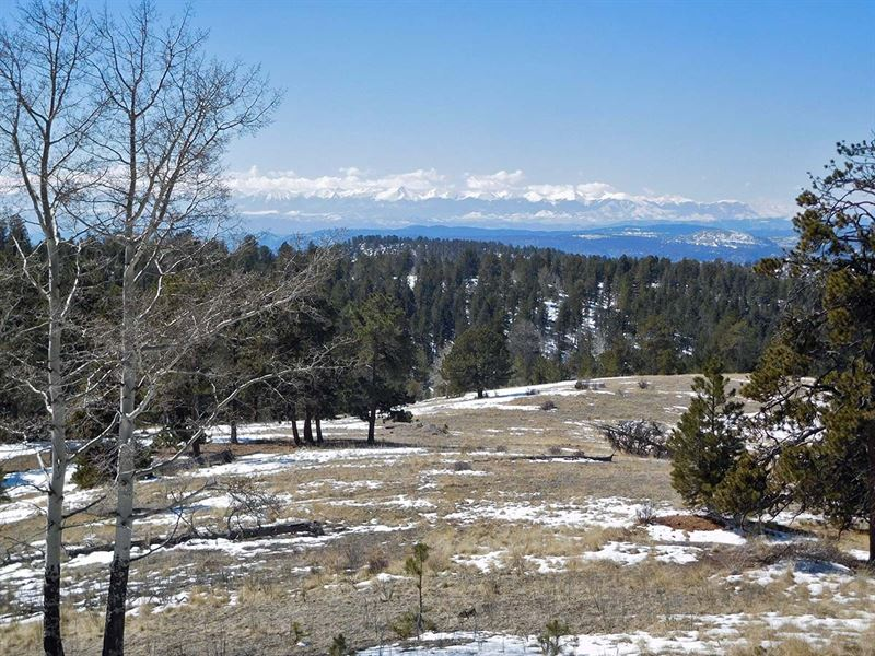 10 Acres Wrapped In Government Land : Cripple Creek : Teller County : Colorado