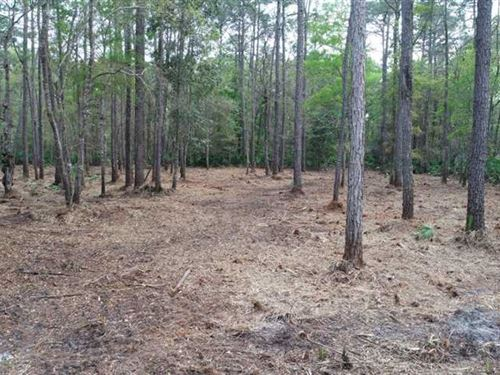 5.86 Acres Land For Sale Kingsland : Kingsland : Camden County : Georgia