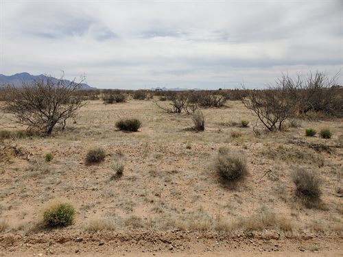 Southeast Deming Luna County Land : Deming : Luna County : New Mexico