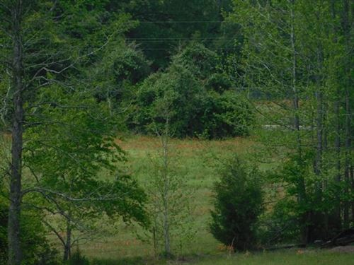 Land, Centerville, Tx, Leon County : Centerville : Leon County : Texas