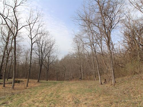 Merritt Hill Rd, 4 Acres : Dexter City : Noble County : Ohio