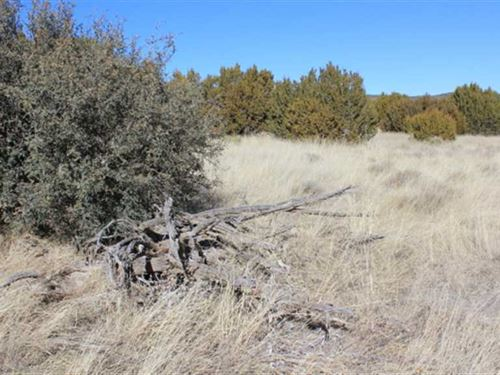 8.122 Acres in a Rural Setting : White Oaks : Lincoln County : New Mexico