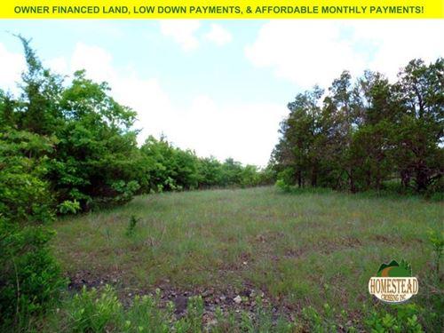 Homestead Land Near Two Lakes : Mammoth : Ozark County : Missouri