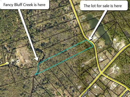 90K Riverfront Lot For Only 30K : Woodbine : Camden County : Georgia