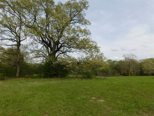Land TN Pasture, Barn, Pond : Adamsville : Hardin County : Tennessee