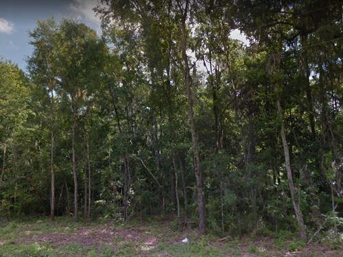Hamilton County, Fl $8,000 : White Springs : Hamilton County : Florida
