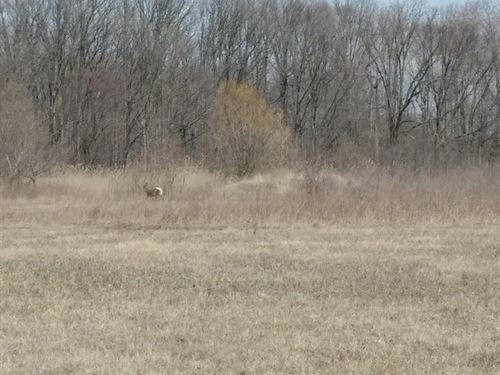 Partially Wooded Land For Sale : Chesterfield : Macomb County : Michigan