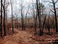 Mountain Top Homesites : Thomaston : Upson County : Georgia